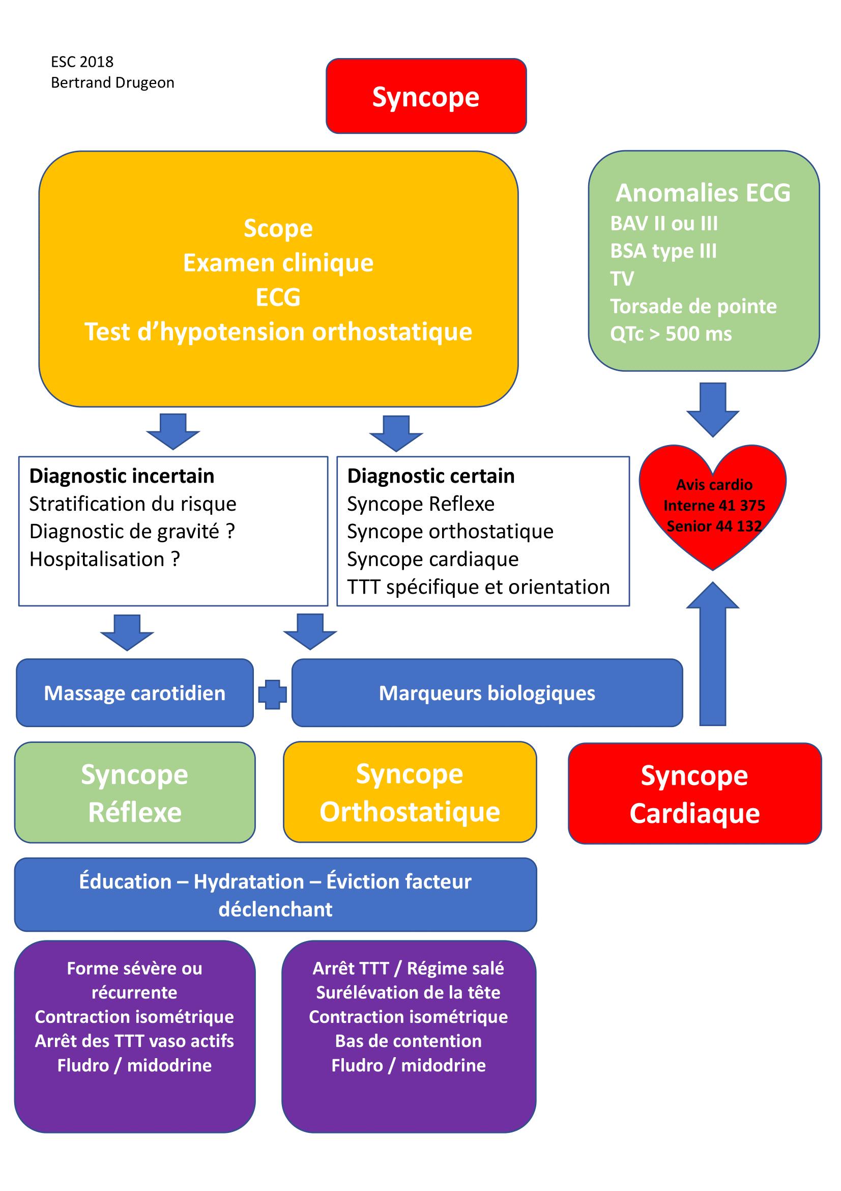 Protocole syncope PDF-1