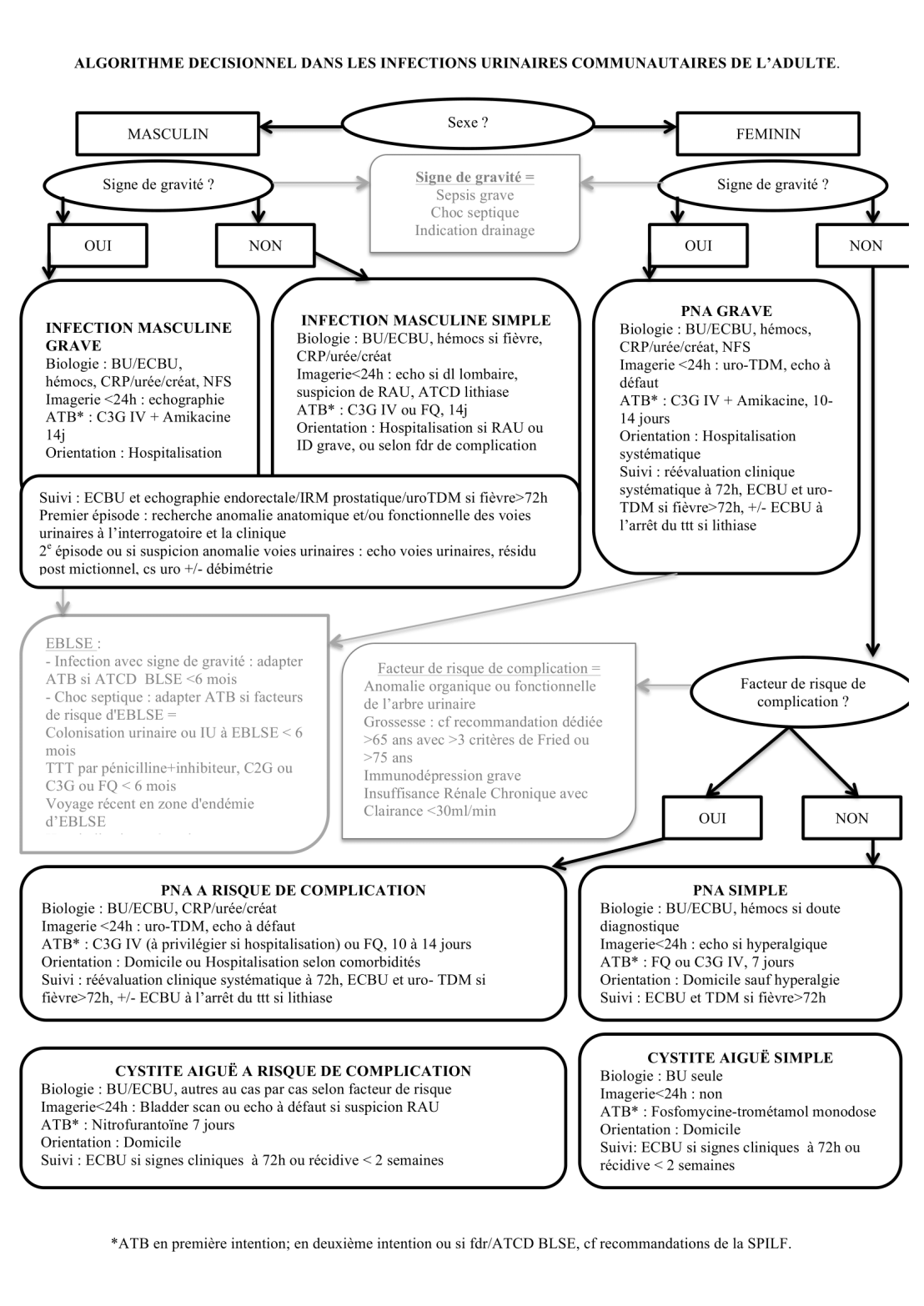 infections-urinaires-copie-1