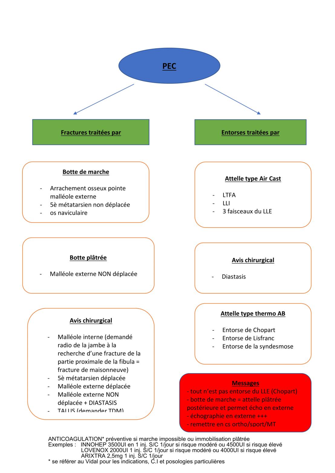protocole-entorse-cheville-2-2